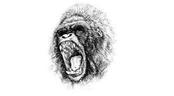 Человек — обезьяна-убийца?