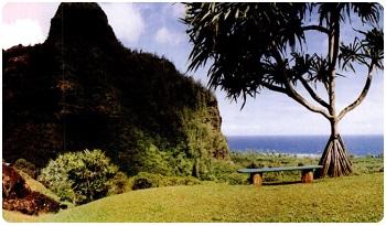 Гавайские растения