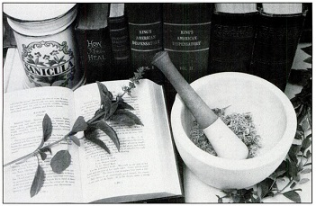 История применения лекарственных растений