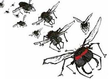 Как бороться с насекомыми и грызунами