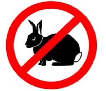 Кроличье голодание, белковое отравление