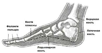 Очень болят ноги из за туфлей что делать