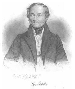 Карл Бурдах